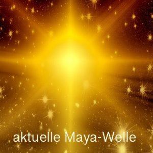 aktuelle-maya-welle