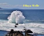 Maya-Wellen-Berührung - Gelbe Samen-Welle
